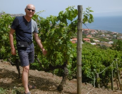 L'extraordinaire Vin de Madère – Madeiras