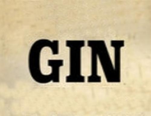 le gin alcool blanc à base de genièvre